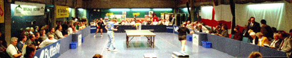 Ashford Table Tennis Club - England Ladies